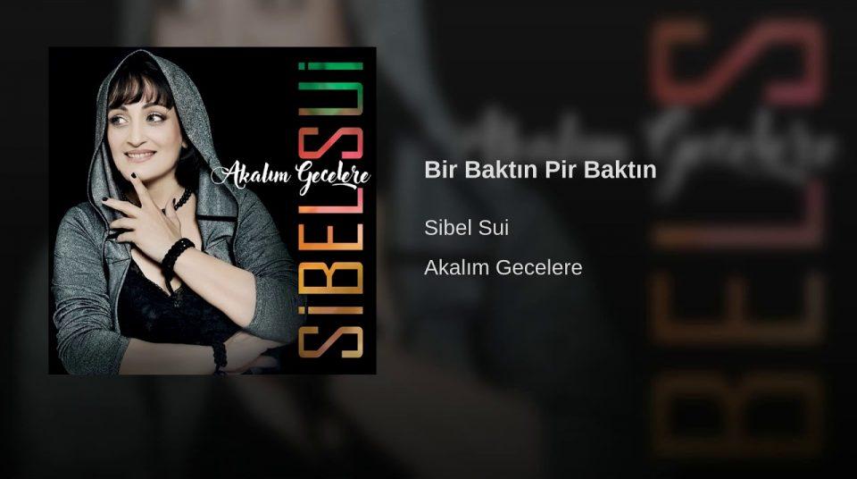 Aranjör Suat Aydoğan- mastering mühendisi Hakan NARTmanleylabs avalondesign -prismsound-PMC-Neve-eventide-millenia